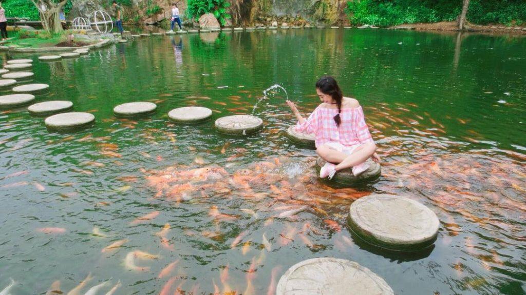 Hồ cá tại khu du lịch