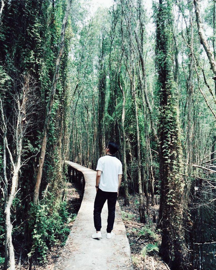 Con đường xuyên rừng ở làng nổi Tân Lập