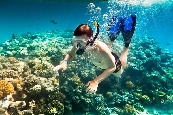 Lặn ngắm san hô ở Nam Đảo Phú Quốc